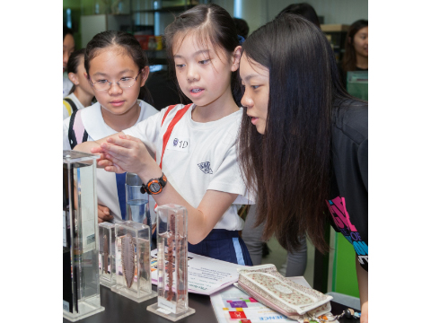HKBU\'s Science Open Day inspires students to explore science behind crystals and its applications
